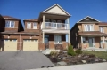 Real Estate Listing  45 Iceland Poppy Tr Brampton